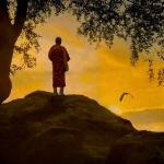 tiny buddha monk