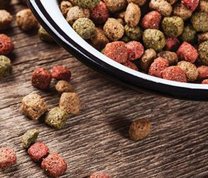 GOS and FOS can be used as an ingredient for pet food.