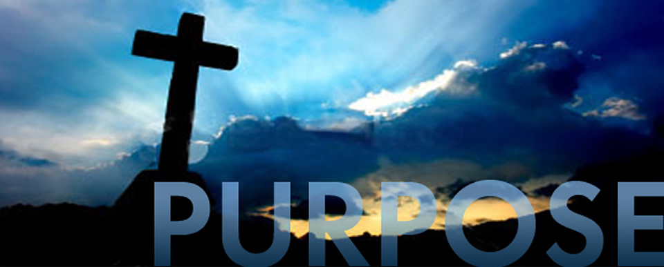 purpose-crop