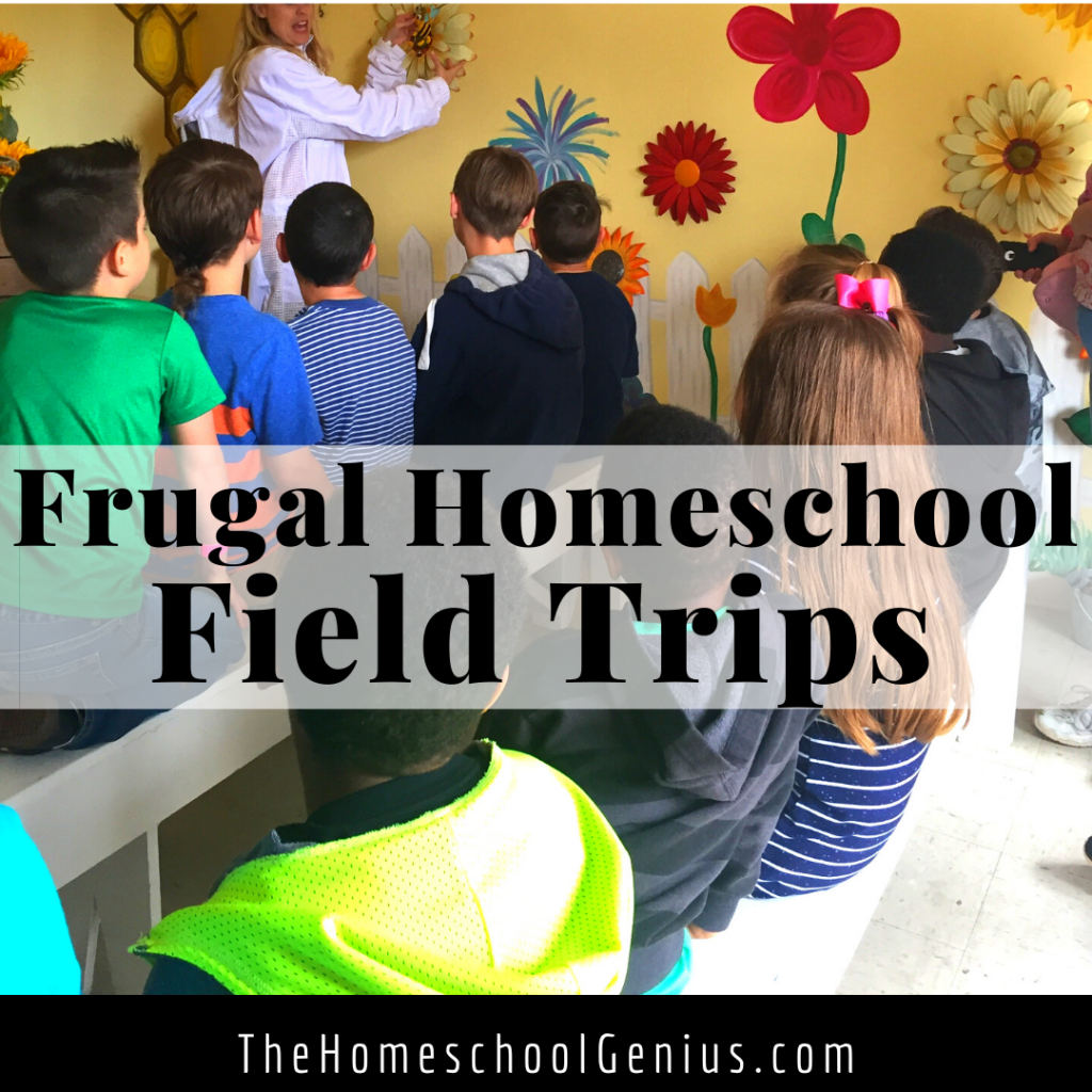 Frugal Homeschool Field Trips to Take This Year