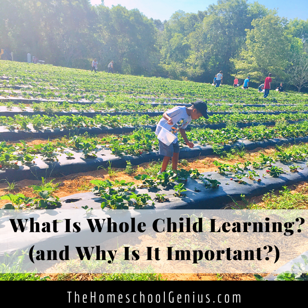 What is Whole Child Learning (and Why Is It Important)?