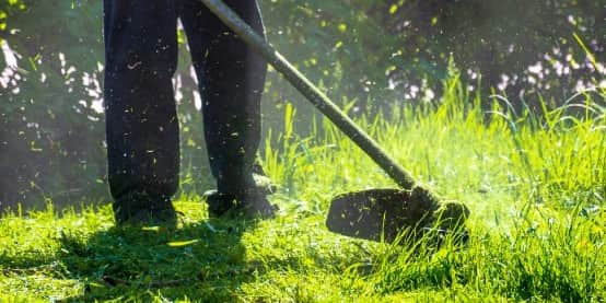 Lawn care weed eating