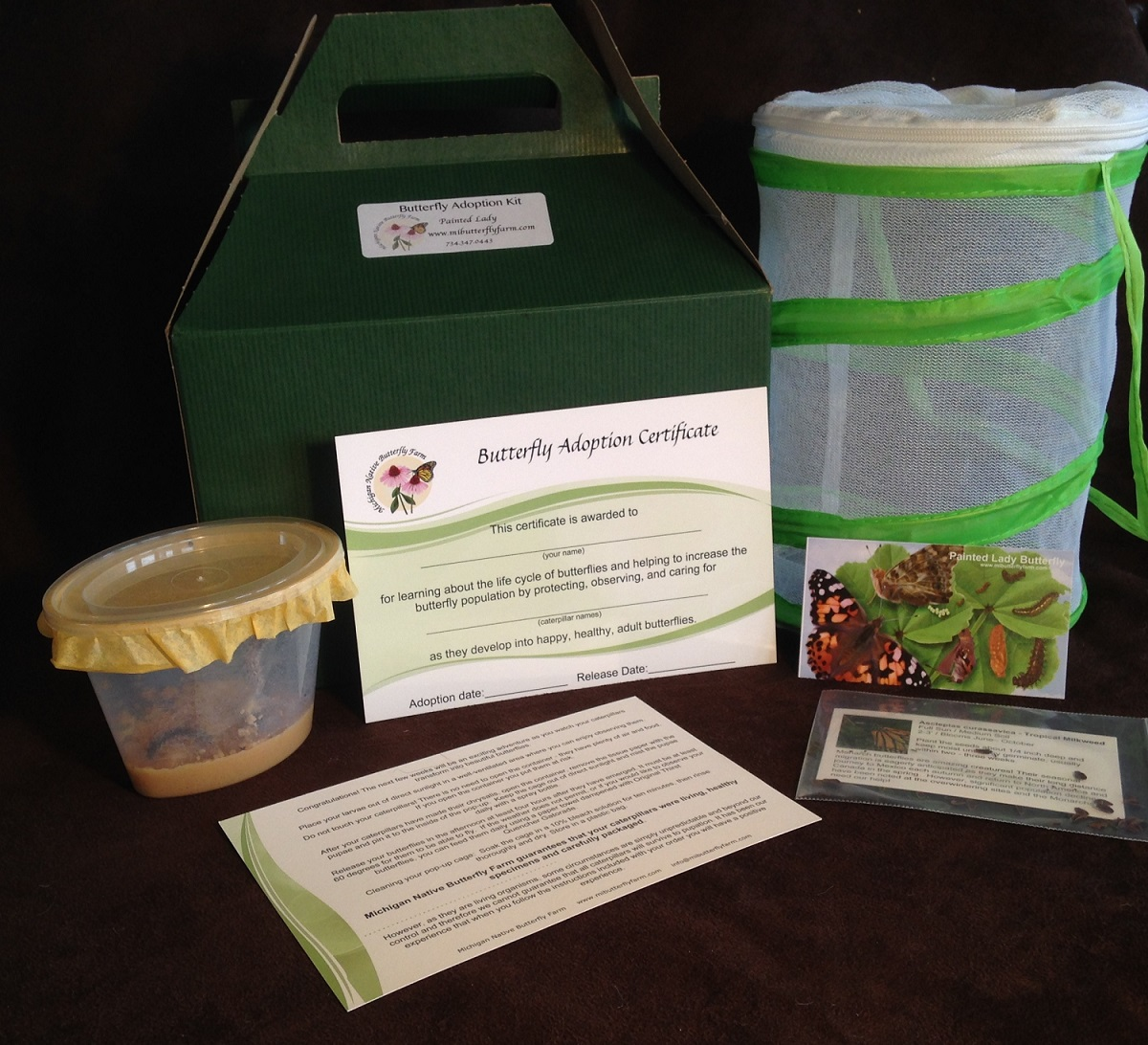 Butterfly Adoption Kit