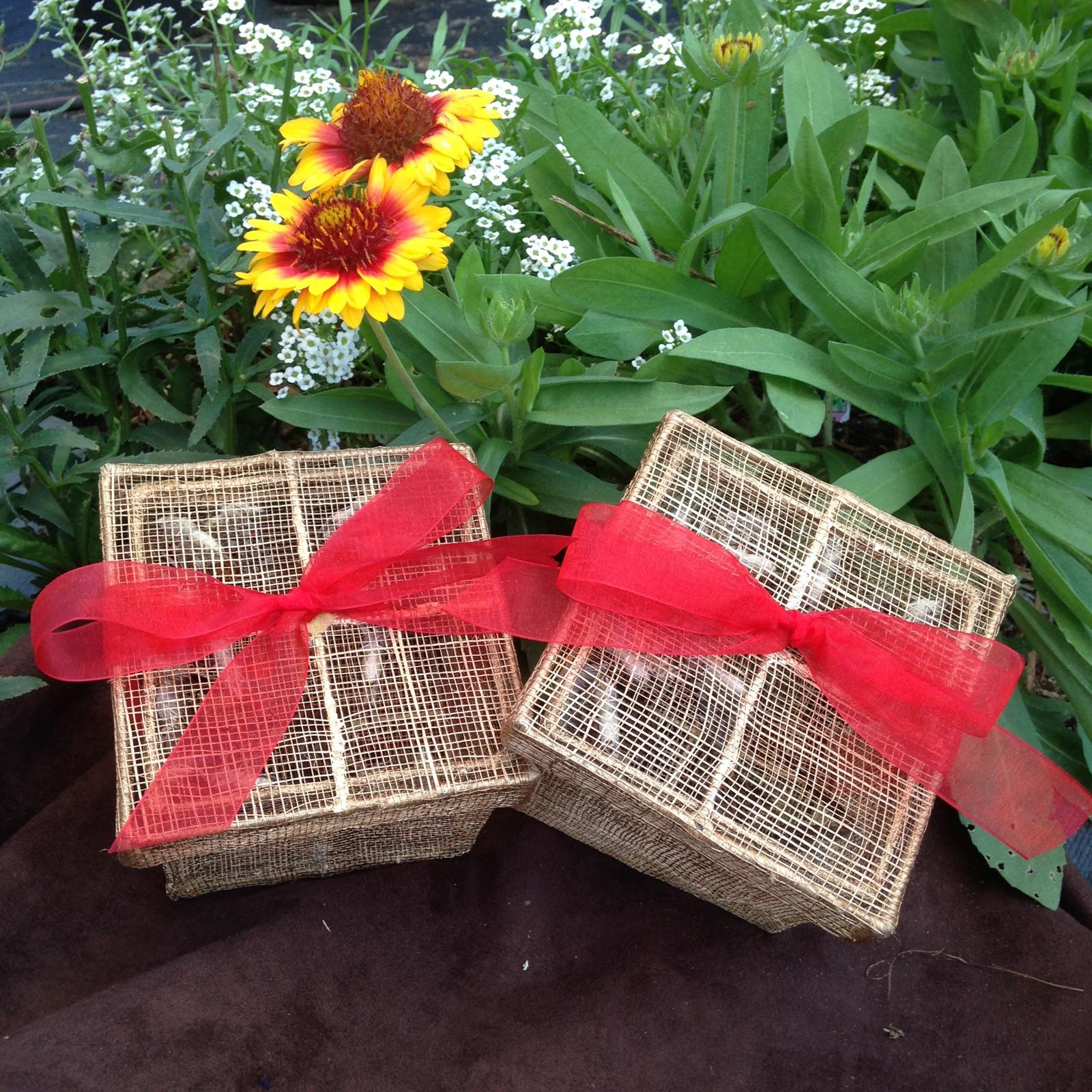 Butterfly Release Packages
