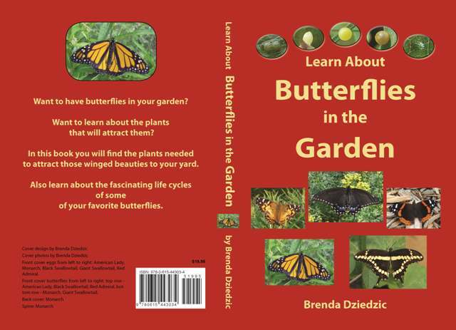 Butterflies in the Garden Book