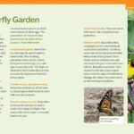How to Raise Monarch Butterflies Book - Step by Step Guide 4