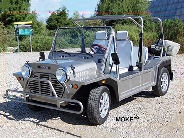 Eagle Custom Golf Carts Custom Moke Golf Cart Florida