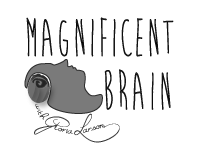 Magnificent Brain