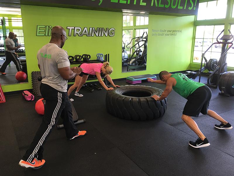 The Elite Training Program