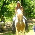 Horse Trail Photo