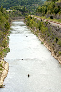 Kayakers on the river