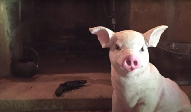 Hog-Trial-Cabin