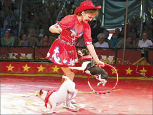 One of the many entertaining acts at the circus
