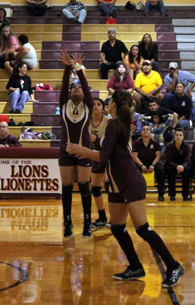 Connie Ceballos sets up the ball for a spike.