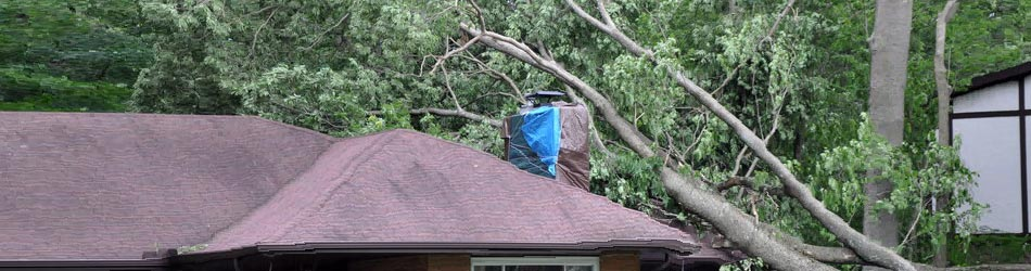 Community Public Adjusters - Wind and Hail Damage Claims Image