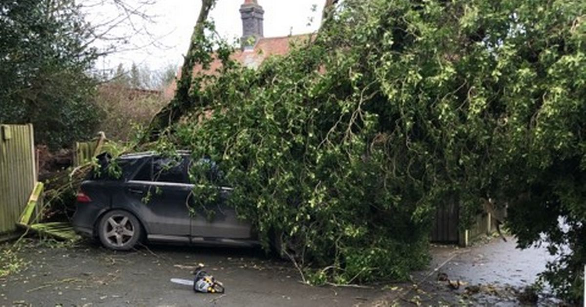 wind and rain property damage