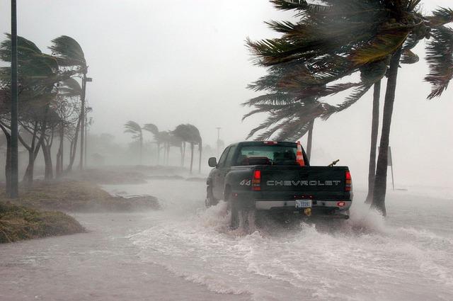 Flood / Storm