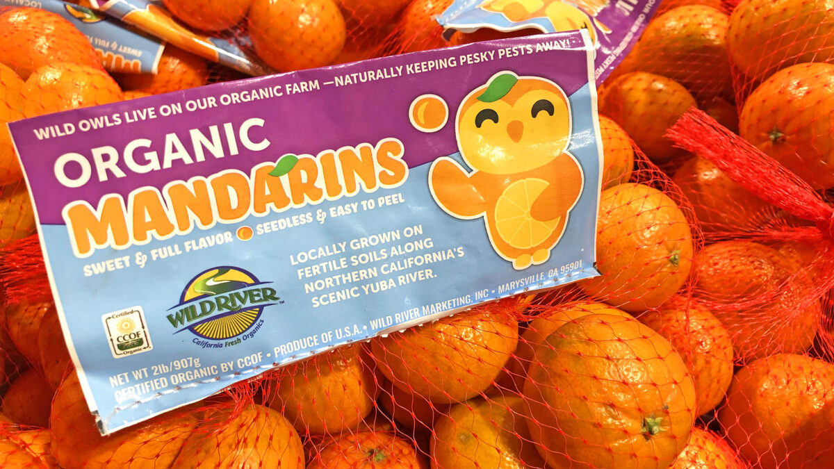 """Mandy Mandarin"" packaging design for Wild River Fruit by Ben Young Landis and Guy Rogers, as seen at a Nugget Market in West Sacramento, California. Part of the ""Our Owl Friends"" branding series. (Photo by Ben Young Landis. Our Owl Friends is a trademark of Wild River Marketing, Inc.)"