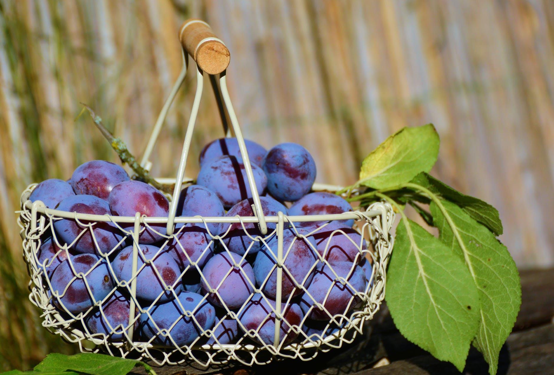 Blueberries Benefits