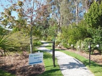 FL Native Gardens