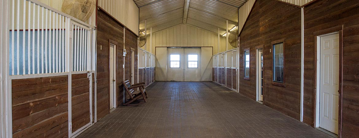 HumphreyQH-theranch-stables-1
