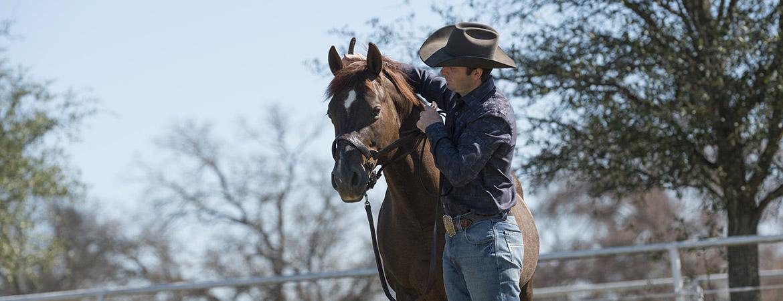 HumphreyQH-homeSlide-horseman