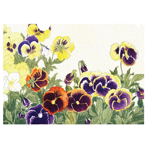 Pansies letter-sized folder by Konan, This pansy image exemplifies the meticulous detail and rich woodblock printing technique for which Tanigami Konan is famous.