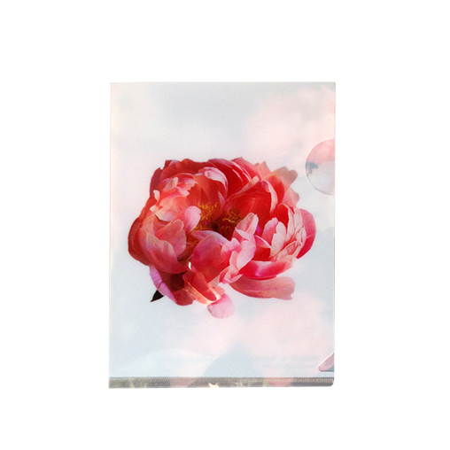 This postcard-sized folder printed with the majestic peonies is small but practical. Perfect for storing business cards, photographs, stamps, receipts and tug the folder in your backpack, pocketbook...