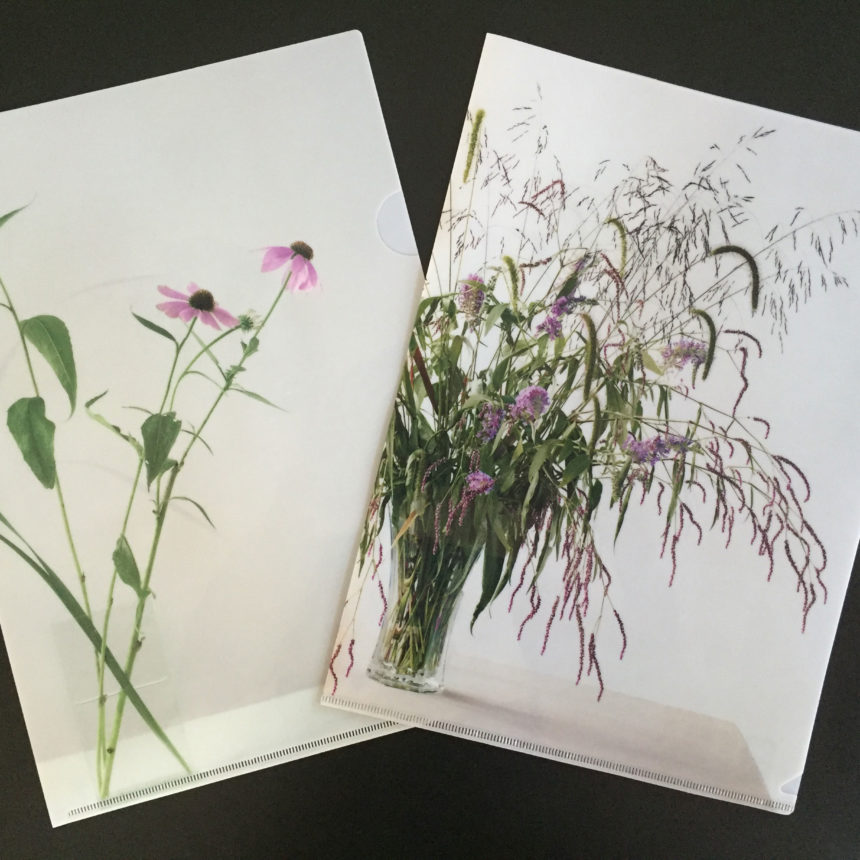 A lovely set of two folders with famed photographer Paula Chamlee's still life inspired arrangement of Echinacea and Buddleia