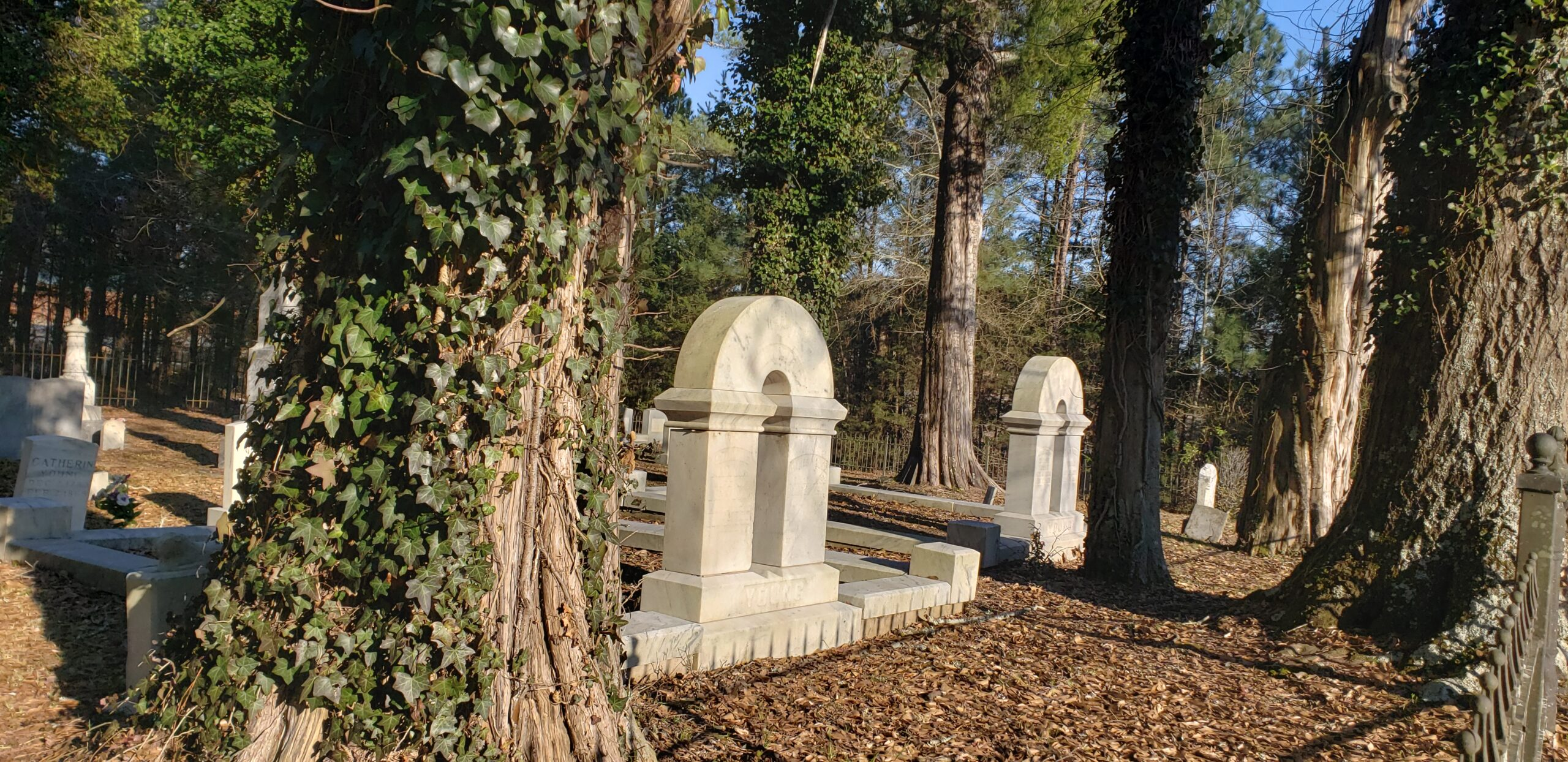 Young Family Cemetery