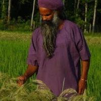 Nazirahk-Amen nice in rice2