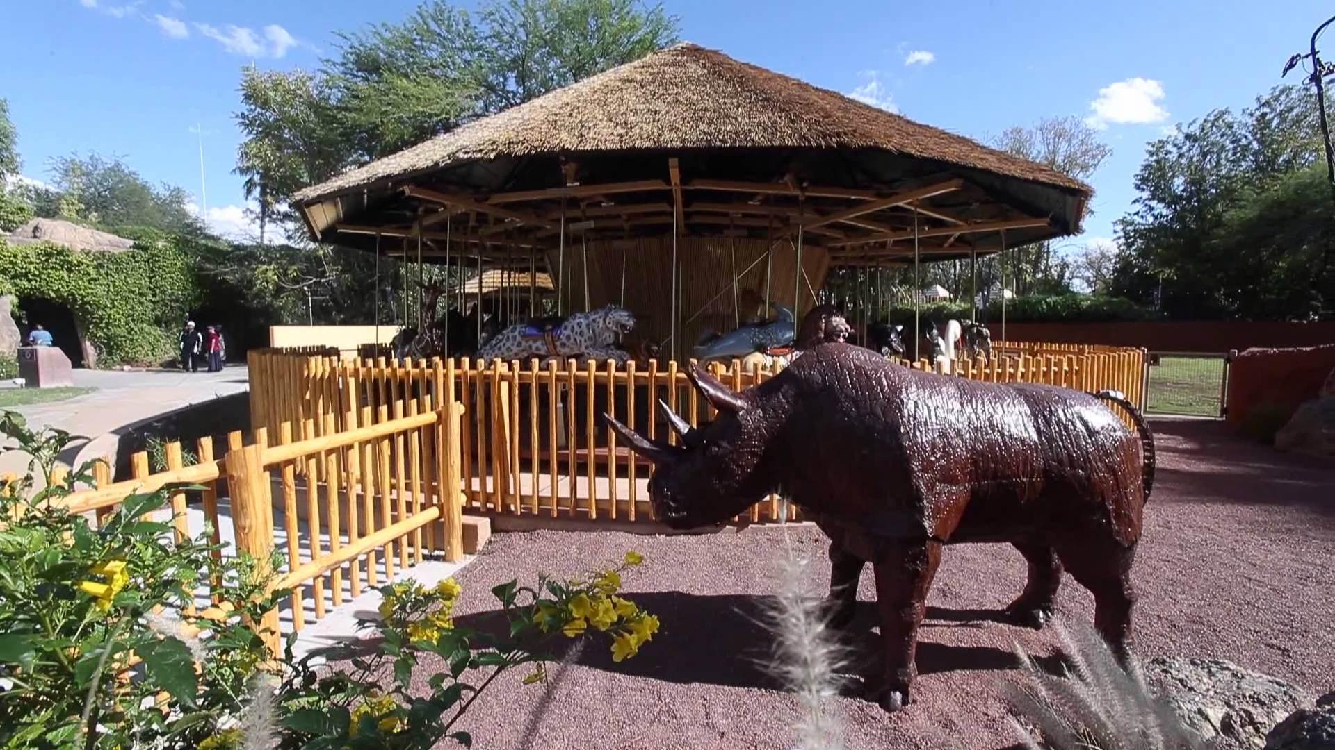Reid Park Zoo in Tucson, AZ.
