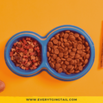EverythingTail-Pet-Food