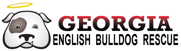 Georgia English Bulldog Rescue logo