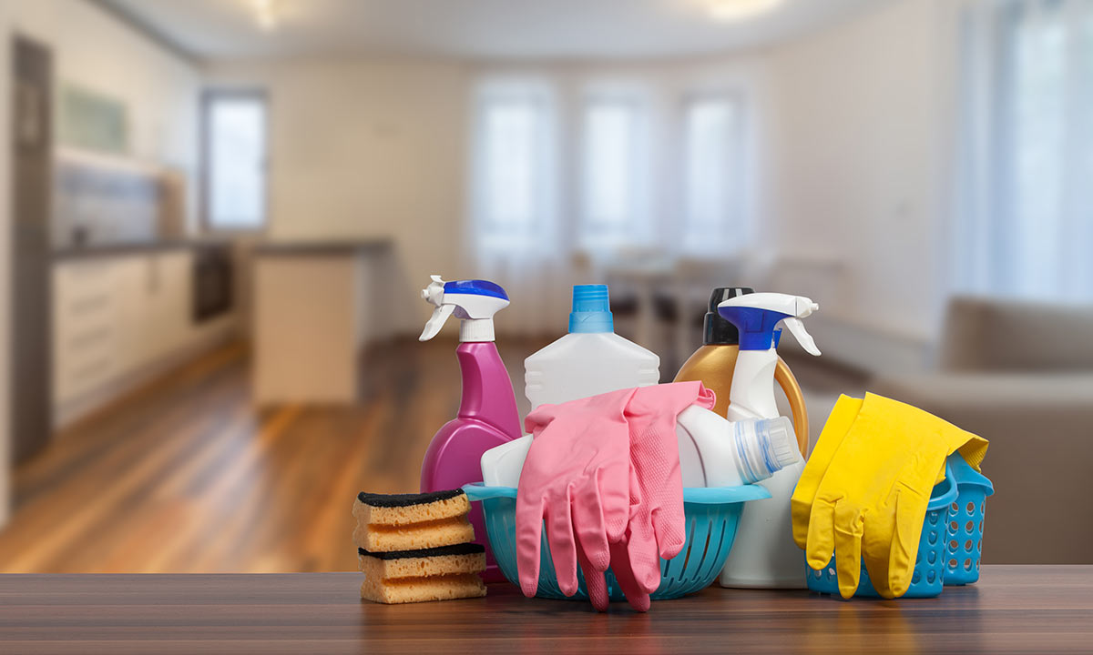 professional cleaning service