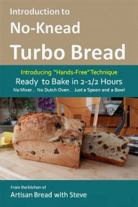 3b.TurboBread(6x9Cover)