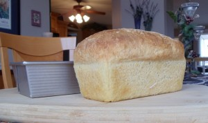 Intro To Baking No Knead Bread In Bread Pans