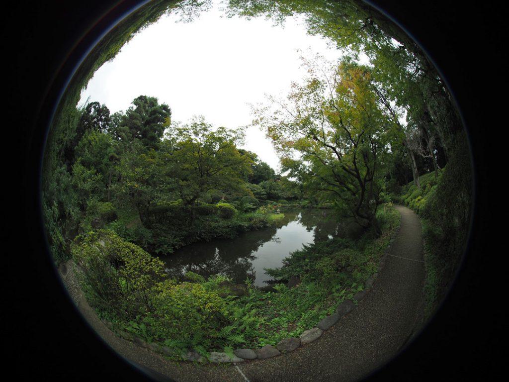 iphoto-lente-fisheye-250-ve-atras-de-si-6