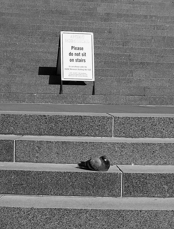"""""""Não sente nas escadas"""""""