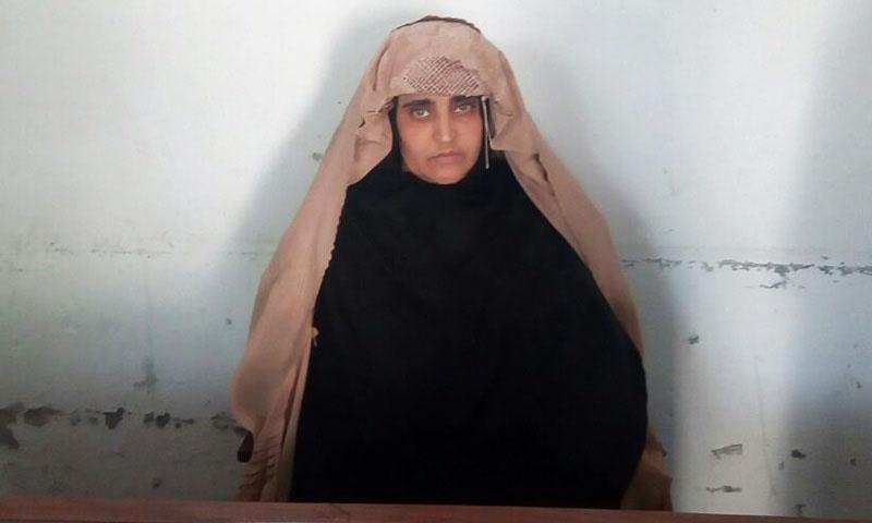 Sharbat Gula fotografada pela Agência de Investigação Federal do Paquistão (FIA)