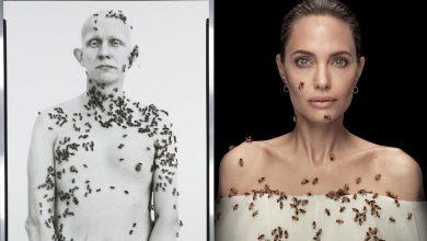 Angelina Jolie faz ensaio coberta de abelhas