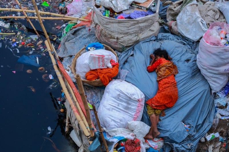 fotos sobre o meio ambiente