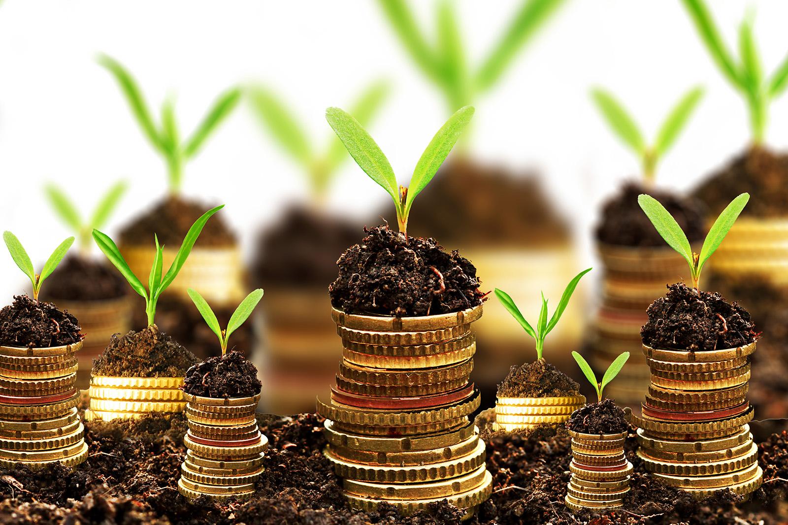 Investing in Fox Cities Economic Development