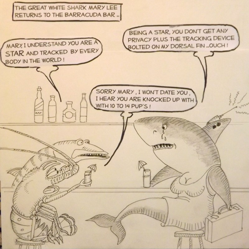 Laurence the Lobster at the Barracuda bar with Mary Lee the Great White Shark.