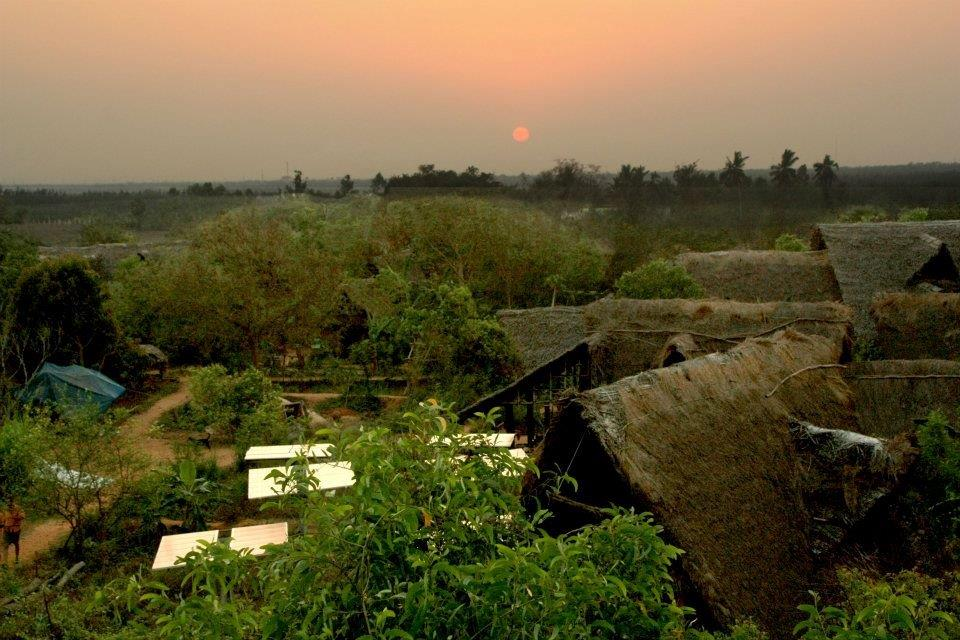 AUROVILLE - Sadhana Forest at Sunset