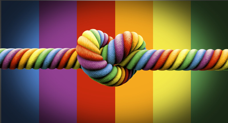 rainbow knot marriage equality
