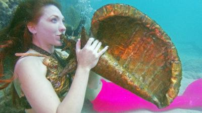 Keys Underwater Music Festival Spotlights Coral Reef Protection