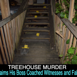 treehouse murder detective pitcher depo story