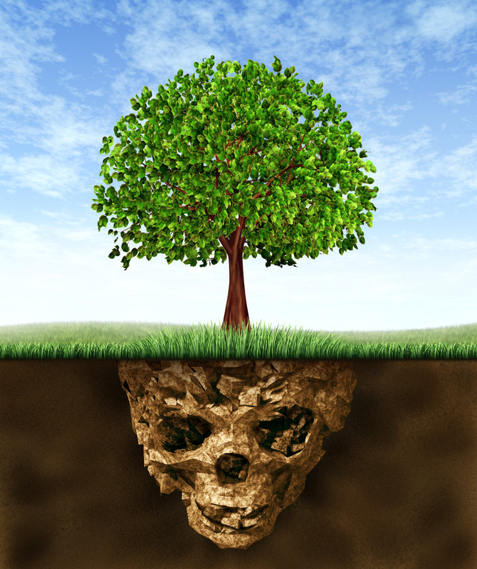 tree polluted earth canstockphoto8670709