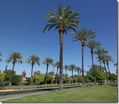 Central-Scottsdale-McCormick-Ranch_t